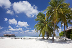 Mooi tropisch strand Stock Foto