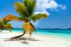 Mooi tropisch strand in de Caraïben royalty-vrije stock afbeelding