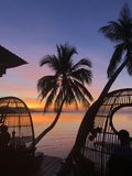 Mooi tropisch strand en zwembad met palmensilhouetten Stock Fotografie