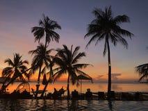Mooi tropisch strand en zwembad met palmensilhouetten Royalty-vrije Stock Afbeeldingen