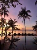 Mooi tropisch strand en zwembad met palmensilhouetten Stock Afbeelding