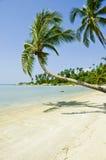 Mooi tropisch strand, Ko Pha Ngan Royalty-vrije Stock Fotografie