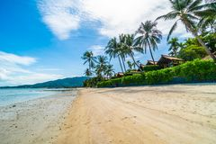 Mooi tropisch strandoverzees en zand met kokosnotenpalm  Royalty-vrije Stock Afbeelding