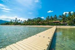 Mooi tropisch strandoverzees en zand met kokosnotenpalm  Royalty-vrije Stock Fotografie