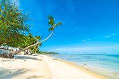 Mooi tropisch strandoverzees en zand met kokosnotenpalm  Stock Foto
