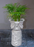 Mooi van ornament royalty-vrije stock afbeeldingen