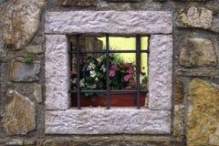 Mooi venster Stock Afbeelding