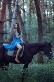 Mooi vrouw het berijden paard in bos Stock Afbeeldingen