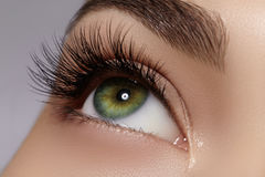 Mooi vrouwelijk oog met extreme lange wimpers, zwarte voeringsmake-up De perfecte samenstelling, snakt zwepen De ogen van de clos stock fotografie