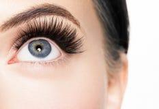 Mooi vrouwengezicht met gezonde de huid natuurlijke make-up van de wimpersschoonheid royalty-vrije stock foto