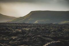 Mooi vulkanisch bemost landschap in IJsland met bergachtergrond stock afbeeldingen