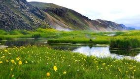 Mooi vulkanisch landschap van gebied van mountainม het gele bloemen, en de hete lente stock videobeelden