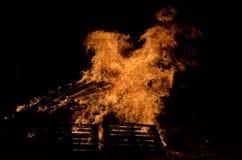 Mooi vuur in de donkere winter Stock Afbeelding