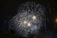 Mooi vuurwerk Stock Fotografie