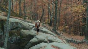 Mooi wandelend meisje in een hoed met een camera op haar hals, reizen door de herfst bos voorbij de rotsen stock footage