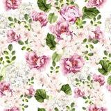 Mooi waterverf helder patroon met pioen, hudrangea en de lentebloemen royalty-vrije illustratie