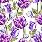 Mooi waterverf naadloos patroon met tulpen en krokusbloemen vector illustratie
