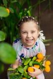 Mooi weinig gelukkig meisje die in kleurrijke kleding in citroentuin Lemonarium verse rijpe citroenen in haar mand plukken Stock Foto