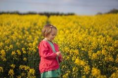 Mooi weinig jong geitje die op het gebied van gele bloemen in een zonnige de zomerdag lopen royalty-vrije stock foto