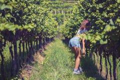 Mooi wijfje in het jasje in de wijngaard Royalty-vrije Stock Afbeelding