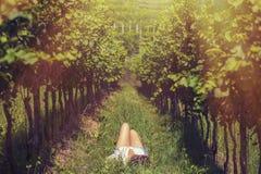 Mooi wijfje in het jasje in de wijngaard Stock Afbeelding