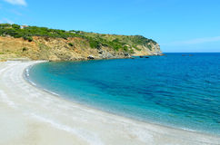Mooi wild strand Royalty-vrije Stock Afbeelding