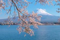 Mooi zet Fuji met sneeuw en blauwe hemel op bij Meerkawaguchiko wordt afgedekt, Japan dat royalty-vrije stock foto