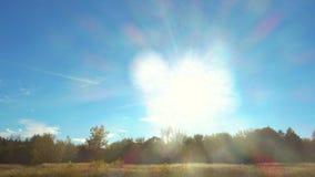 Mooi zonlicht in blauwe hemel over bos en weide stock video
