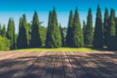 Mooi zonlicht in het de herfstbos met houten plankenvloer Royalty-vrije Stock Afbeelding