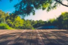 Mooi zonlicht in het de herfstbos met houten plankenvloer Stock Fotografie
