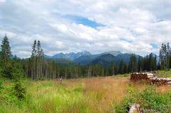 Mooi zonnig berglandschap in de vakantie de dag Royalty-vrije Stock Afbeelding