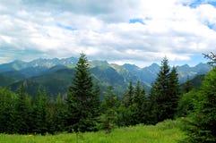 Mooi zonnig berglandschap in de vakantie de dag Stock Afbeelding