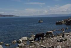 Mooi zonnig landschap op eiland in meer Titicaca die over tempel van moederaard kijken van tempel van vaderaard stock fotografie