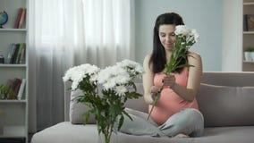 Mooi zwanger meisje die huis met aardige bloemen verfraaien, esthetisch plezier stock video