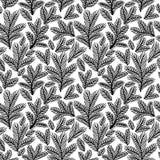 Mooi zwart-wit bloemenornament, Vector naadloos patroon Stock Afbeelding