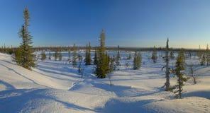 Mooi Zweeds landschap Stock Afbeeldingen