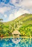Mooi zwembad een tropische toevlucht, verticale samenstelling Royalty-vrije Stock Afbeelding