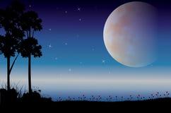 Mooie aard bij nacht, Vectorillustraties Royalty-vrije Stock Fotografie