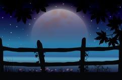 Mooie aard bij nacht, Vectorillustraties Royalty-vrije Stock Afbeeldingen