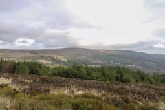 Mooie aard en landschappen van Ierland stock foto