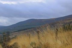 Mooie aard en landschappen van Ierland stock afbeeldingen