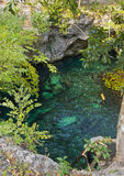 Mooie aard Grote Cenote in Mexico royalty-vrije stock afbeelding