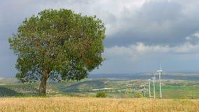 Mooie aard, milieubehoud, duurzame energie, windturbines stock video
