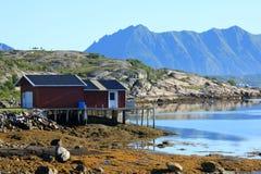 Mooie aard in Noorwegen. Royalty-vrije Stock Foto