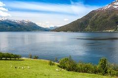 Mooie Aard Noorwegen Royalty-vrije Stock Afbeelding