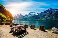 Mooie Aard Noorwegen Stock Foto