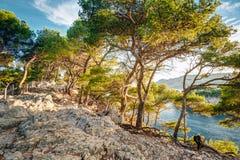 Mooie aard van Calanques op de azuurblauwe kust van Frankrijk Cala Royalty-vrije Stock Foto