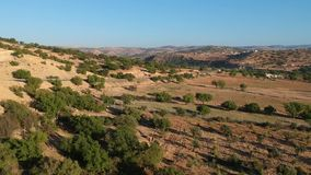 Mooie Aard van Marokko en een lege Straat en Argan Trees dichtbij Marrakech door Hommel van hierboven stock videobeelden