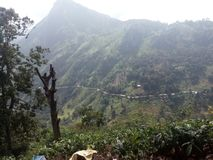 Mooie aardplaats Ella Sri Lanka royalty-vrije stock afbeeldingen