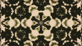 Mooie abstracte symmetriecaleidoscoop, 3d teruggevende achtergrond, computer het produceren Royalty-vrije Stock Afbeeldingen